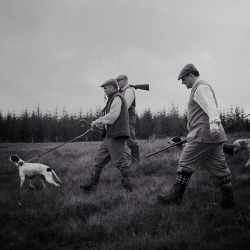 Walking out with pointers in the North Highlands Pointers Scotland North Highlands Grouse