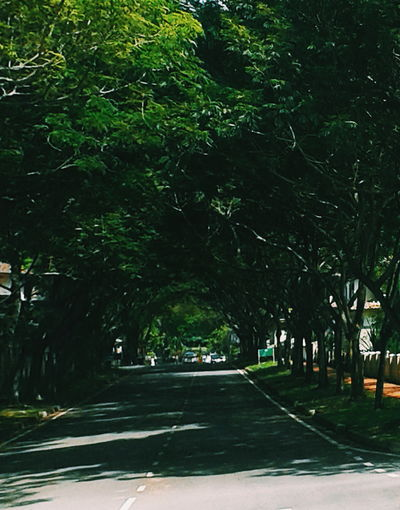 Nature with modern life Tree Outdoors Street The Way Forward Road Park - Man Made Space No People City Nature Sky