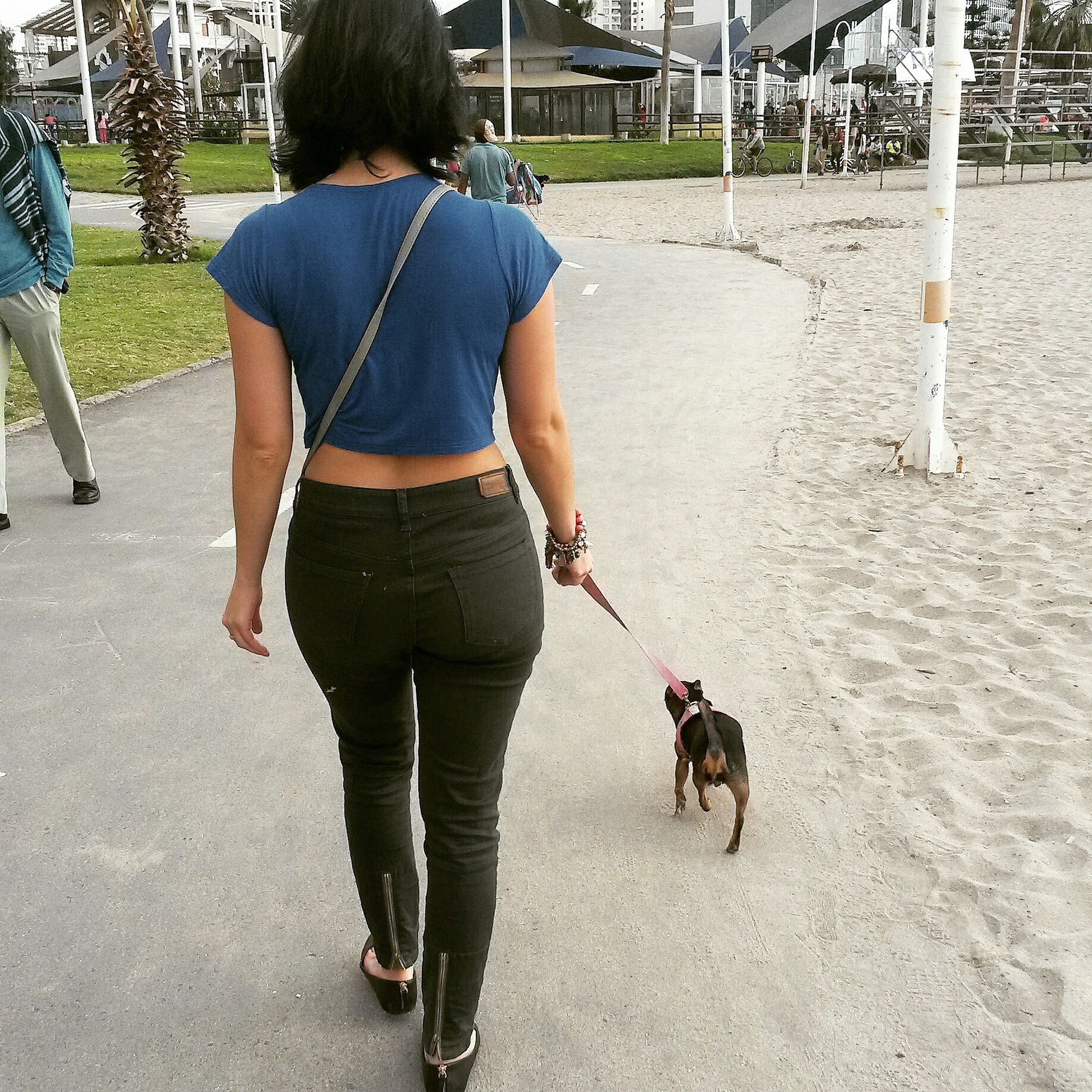 domestic animals, animal themes, dog, pets, one animal, mammal, full length, lifestyles, walking, rear view, casual clothing, leisure activity, men, street, pet leash, pet owner, togetherness