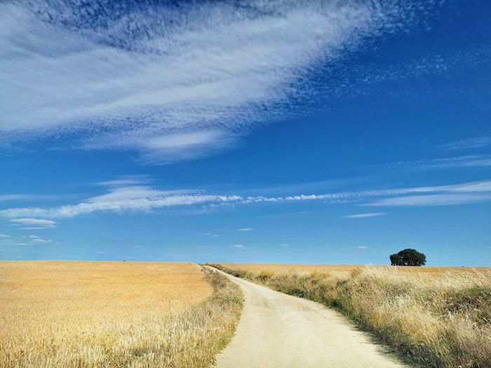 Road amidst field against sky