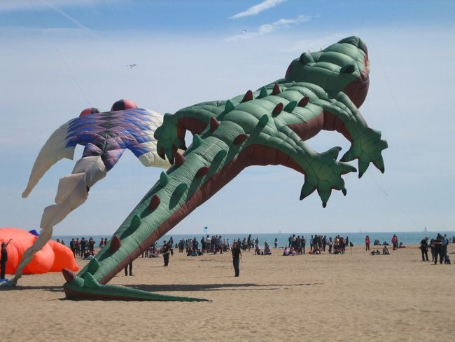 In Valencia even crocodiles can fly! International Kite Festival Kites Kite Kite Flying Fly Flying Flying High In The Air In The Sky Spanish Spring Horizon Over Water Beach Mediterranean Sea Leisure Activity Sky Multi Colored Air Borne