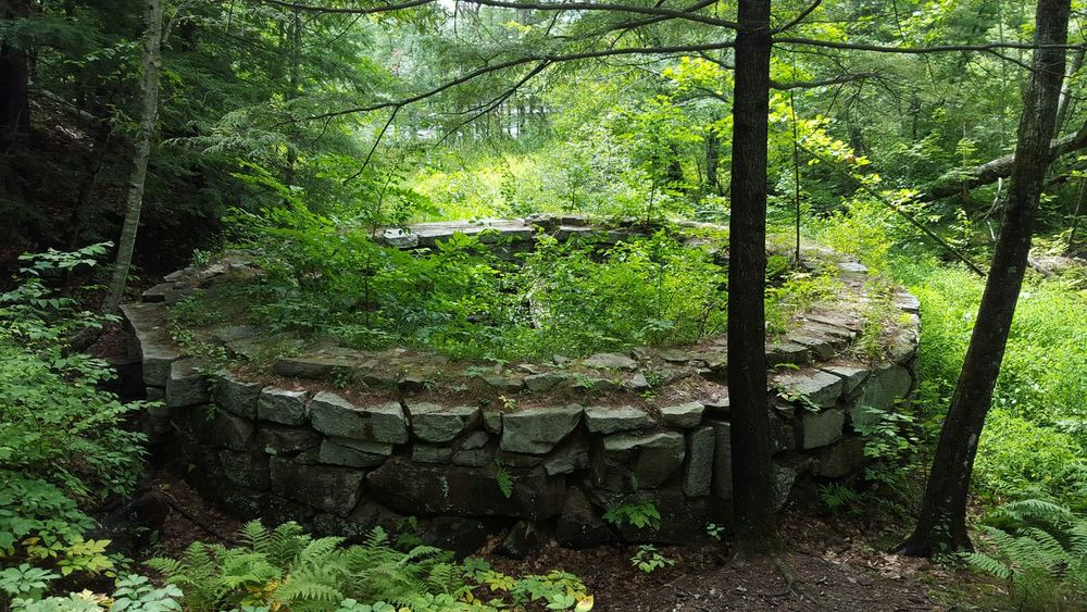 Beautiful Nature Mainewilderness Maine Outdoor Photography Wildlife & Nature Trees Oldmill Old Ruins Historical Place Mainephotography