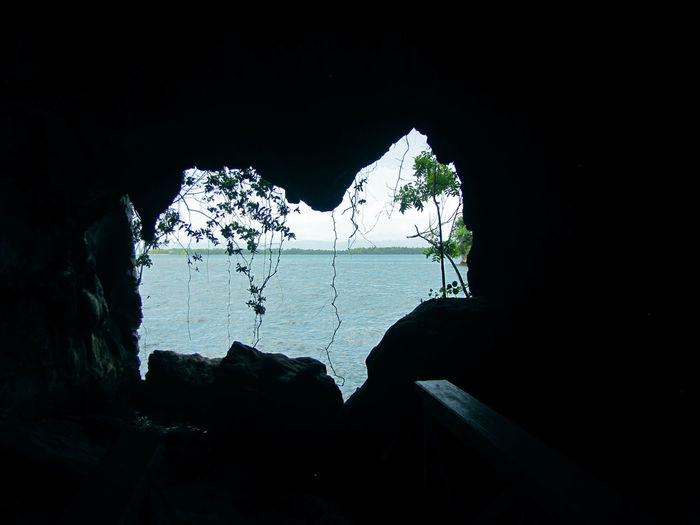 Shape of a heart made in the rock by nature in the Los Haitises National Park, Samana, Dominican Republic. Inside Out Perspectives On Nature Beauty In Nature Cave Day Heart Shape Mountain Nature No People Outdoors Scenics Sky Tree Water