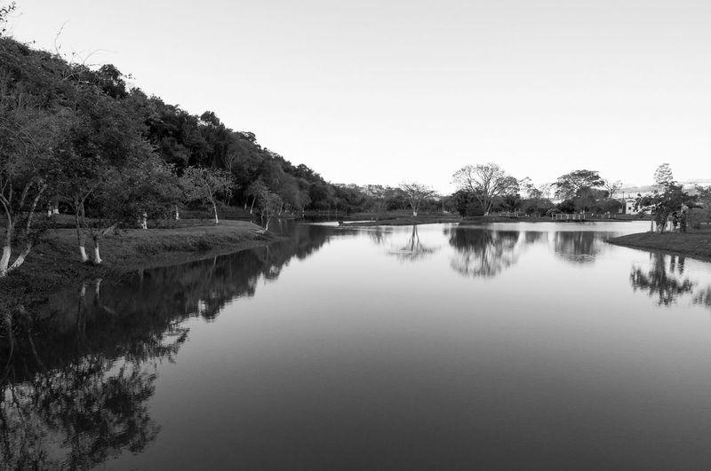Parque do Lago