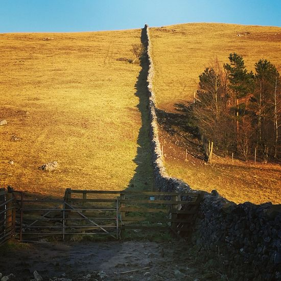 dry stone wall North Yorkshire Moors Thisisengland Northyorkshiremoors Fields Hiking England🇬🇧 Uk Sky Landscape Nature Tranquil Scene Beauty In Nature Day Outdoors Field No People Scenics Tree
