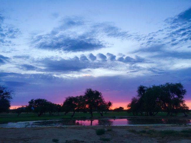 Sunset in Safford, Arizona. Landscape_photography Safford Clouds Outdoor Photography Colors Clouds And Sky Arizona Nature Photography Beauty In Nature Light Skies Beauty Nature Arizona Sky Reflections Reflection Monsoonseason Color Lake Trees