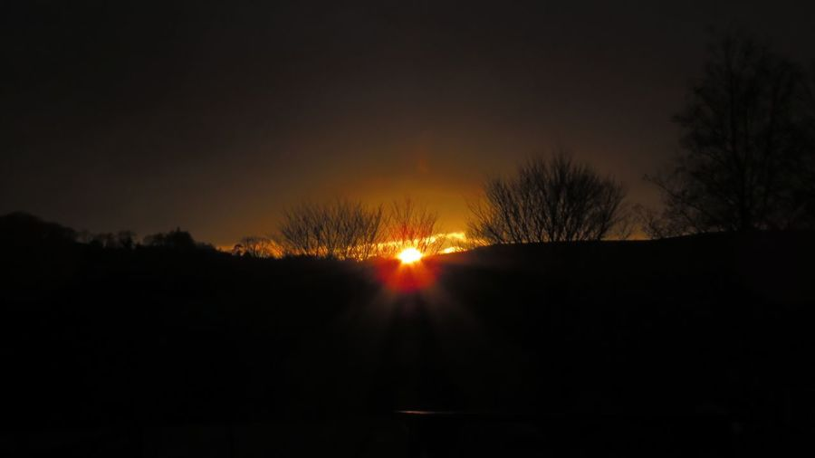 Winter Sun Sun