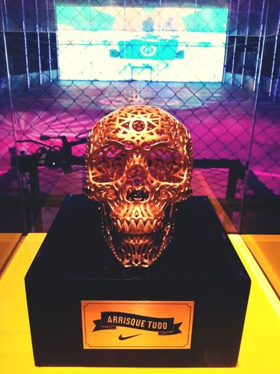 Art Nike World Cup 2014 Skull