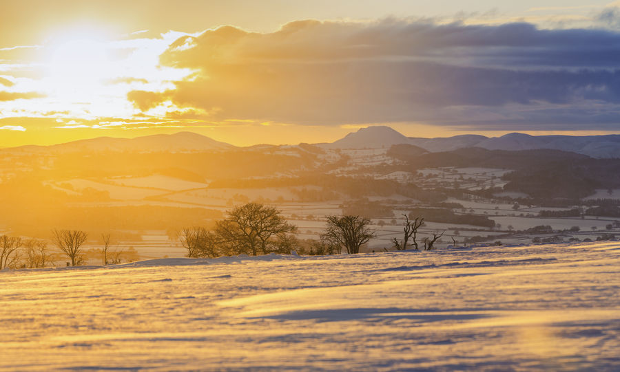 Winter Sunset over Scenic Hills Covered in Snow Beauty In Nature Cloud - Sky Cold Temperature Day Field Flare Landscape Mountain Nature No People Outdoors Rural Scene Scenics Shropshire Sky Snow Sun Sunbeam Sunlight Sunset Tranquil Scene Tranquility Tree Warm Light Winter