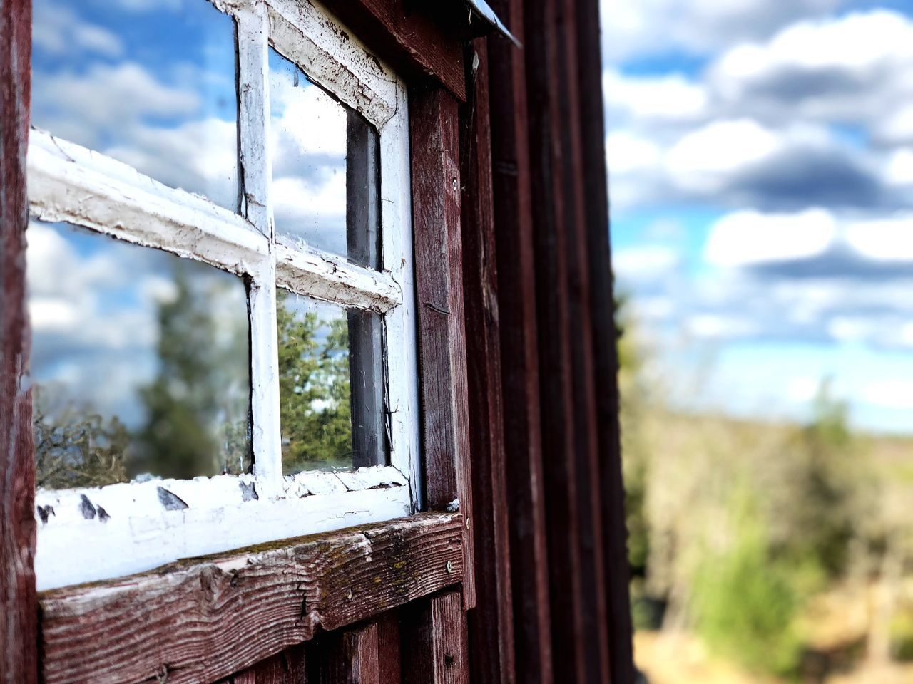 window, day, wood - material, focus on foreground, no people, architecture, glass - material, built structure, nature, sky, old, cloud - sky, outdoors, tree, abandoned, transparent, close-up, damaged, weathered, building exterior, window frame