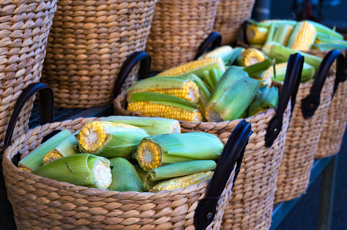Close up of sweet corn in woven straw rustic baskets. Sunday farmers market background Arrangement Basket Choice Close-up Corn Corncob Display Ear Farm Markets Food Group Of Objects Heap Large Group Of Objects Market Stall Organic Food Organic Gardening Repetition Stack Still Life Variation Yellow Yellow Color