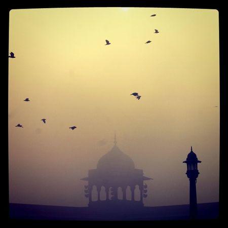 Mosque in Old Dehli India . Olddehli dar736 religion birds