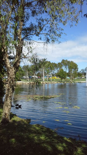 Centenary Lakes, Caboolture