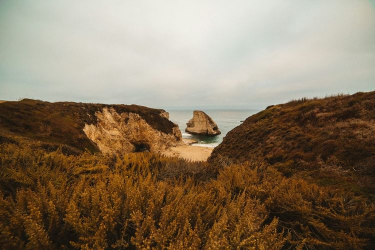 Sharkfin Cove Davenport  Canonphotography Canon Landscape Landscape_Collection VSCO Vscocam Tranquility Sea Mood Landscape_photography Coastline California Scenics Canon_photos Canon5Dmk3 Travel Destinations Canon_official