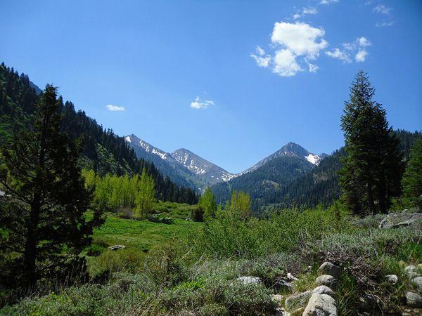 Mountains Calfornia Kings Canyon USA Travel Landscape