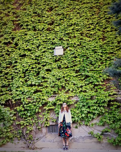 Women High Angle View Field Grass Plant Green Color Agricultural Field Green Greenery Plantation Summer Exploratorium EyeEmNewHere Tea Crop Woods Grassland Footpath Countryside 10 A New Beginning