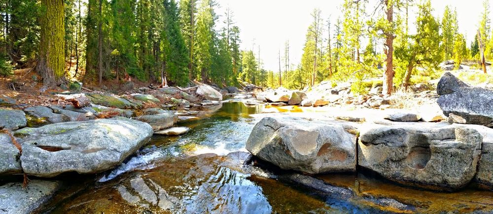 Gerle creek. Mountain Stream Eyem Nature Lovers  Trout Stream Nature_collection