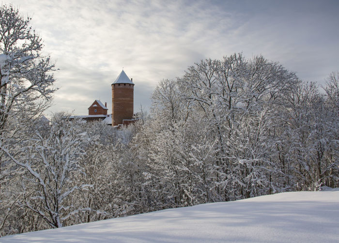 Tranquil winter scene with bare trees against old castle
