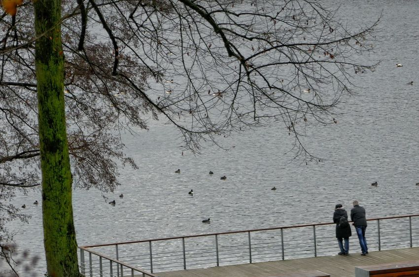 Dezember 2016 At Sea Tree Walk To Go From Here Real People Nature Outdoors Two People Two Is Better Than One Water Day Beauty In Nature People Taking Photos Authentic Moments From My Point Of View Outdoors Photograpghy  Close-up Streetphotography StillLifePhotography