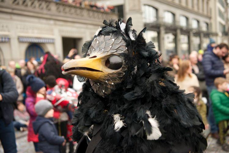 Black crow Arts