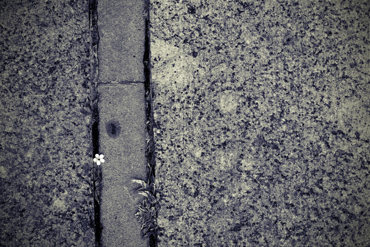 textured, no people, day, outdoors, rough, close-up, backgrounds, cracked, full frame, built structure, architecture, nature
