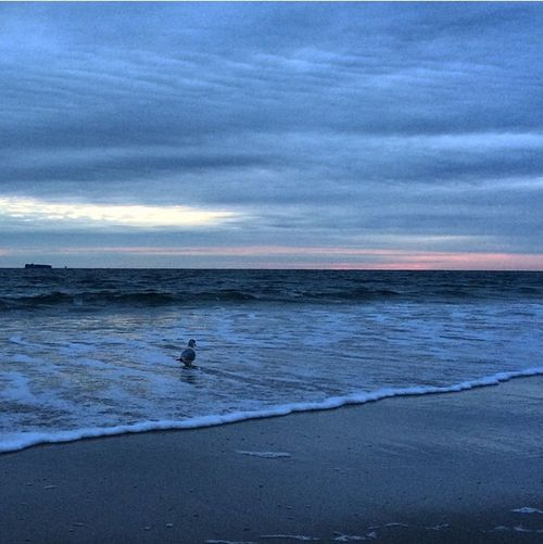 Sunset At Long Beach, NY EyeEm Best Shots Eye Em Nature Lover Sky Collection Visualmagic Beautiful Sky