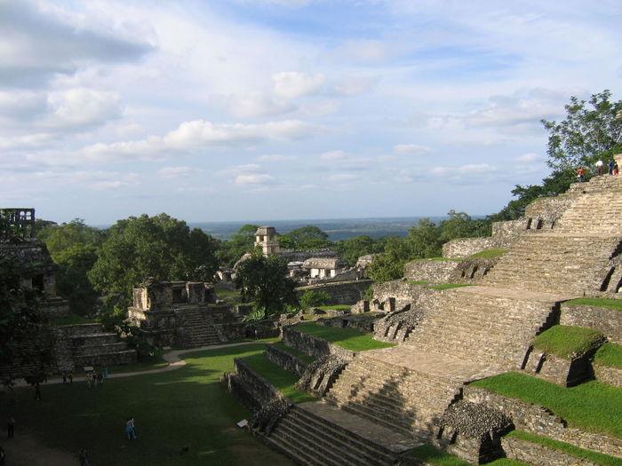 Palenque, Chiapas Ancient Ancient Civilization Architecture Building Exterior Built Structure Day High Angle View History Nature No People Old Ruin Outdoors Palenque Sky The Past Tourism Travel Destinations Tree