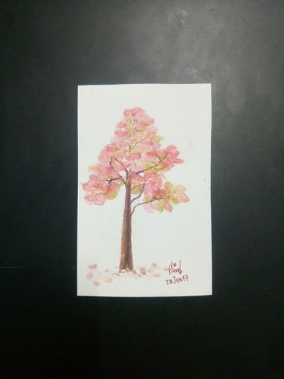 Tree drawing Tree Drawing Eyeemdraw Nature Autumn Leaves Nature Watercolourpencils Watercolor Art