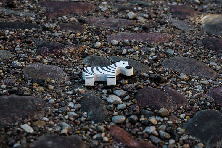 High angle view of a toy on beach