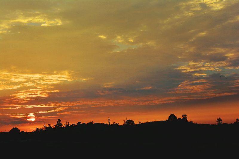 Silhouette Sunset Orange Color Nature Dramatic Sky Outdoors Tree Landscape Cloud - Sky Scenics Dusk Before Dark Senja  Maghrib Kampumg Awah