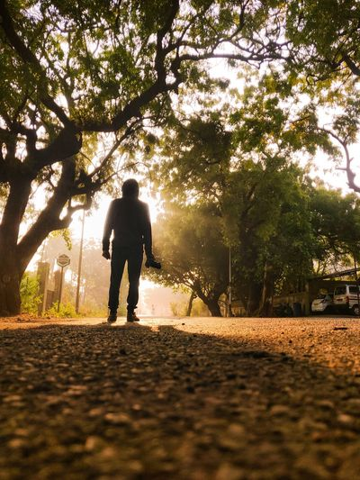 Rear view of man walking on road amidst trees