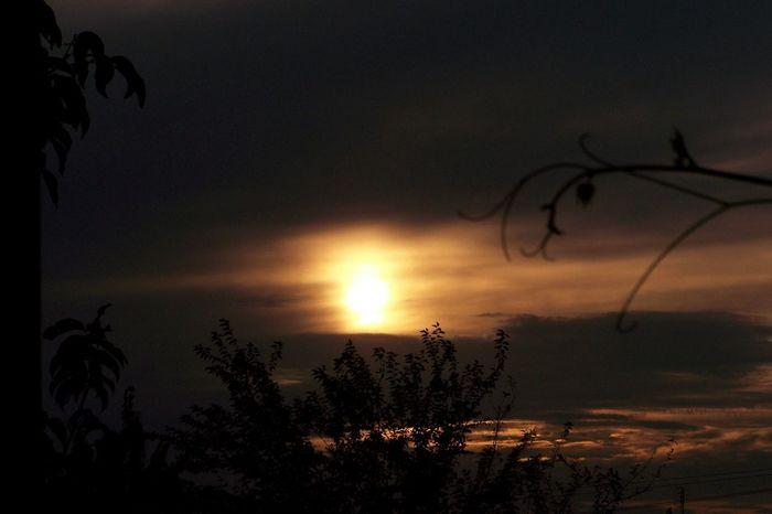 Skies Odessa Village Sunset Nature Clouds Ukraine EyeEm Best Shots Landscapes Weather
