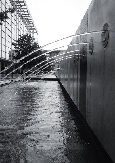 Great Museum EyeEm Best Shots - Black + White Ilovebrum