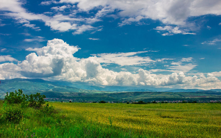 Europe European  Bulgaria Cloud - Sky Sky Tranquility Tranquil Scene Environment Landscape Beauty In Nature Scenics - Nature Plant Land Field Nature Grass Green Color Day No People Non-urban Scene Growth Idyllic Outdoors Colour colour of life Colours Colourful Color Colored Background