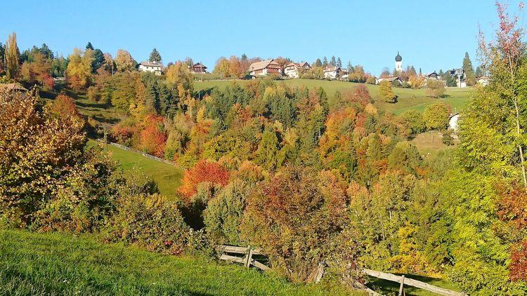 Auf dem Ritten, Blick auf Oberbozen, Südtirol, Italien Nature Outdoors No People Growth Agriculture Rural Scene Day Landscape Tree Beauty In Nature Sky Freshness