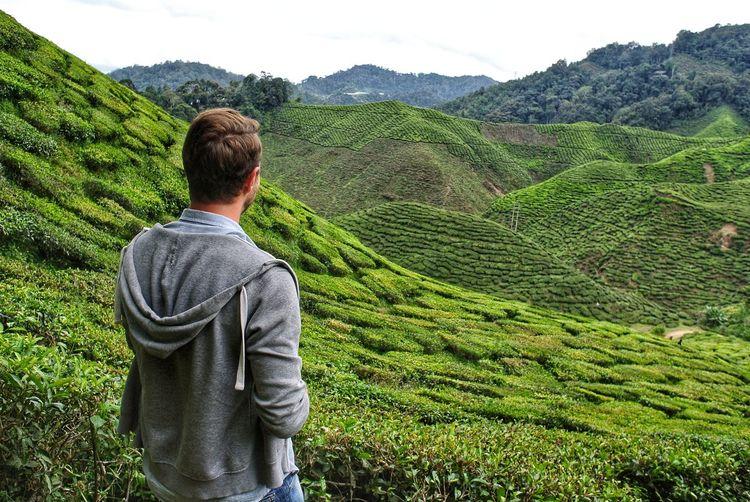 Rear view of man looking at farm