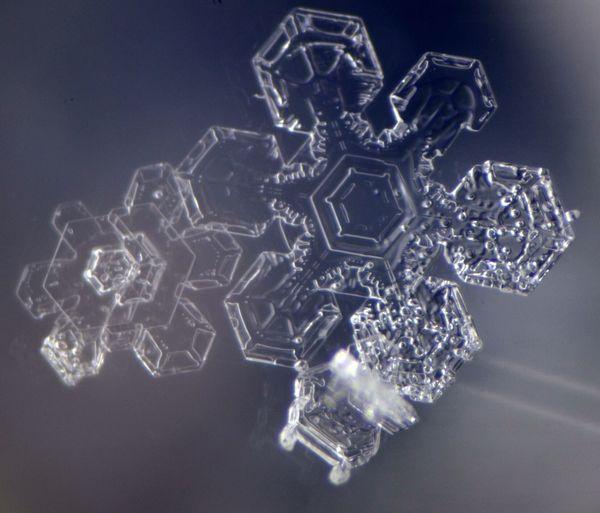 Elektronenmikroskop aufgenommen im FELMI ZfE Snowflake