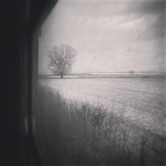 Train Travel Campagne