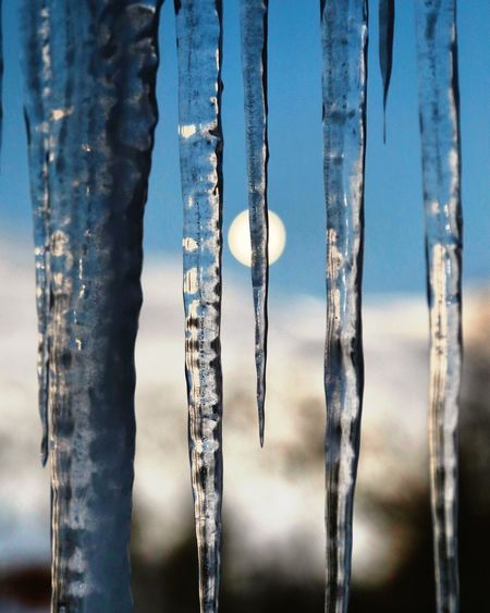 Moonlight Moon Ice Focus On Foreground No People Nature Close-up Cold Temperature Blue Frozen Day Winter Icicle Frost Backgrounds