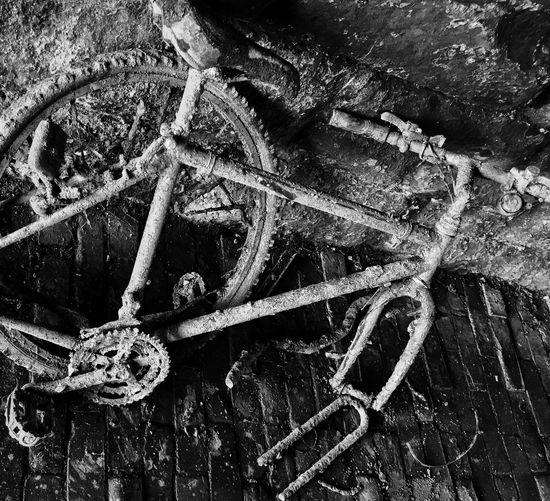 Blackandwhite Bicycle Bike Decay Rusty