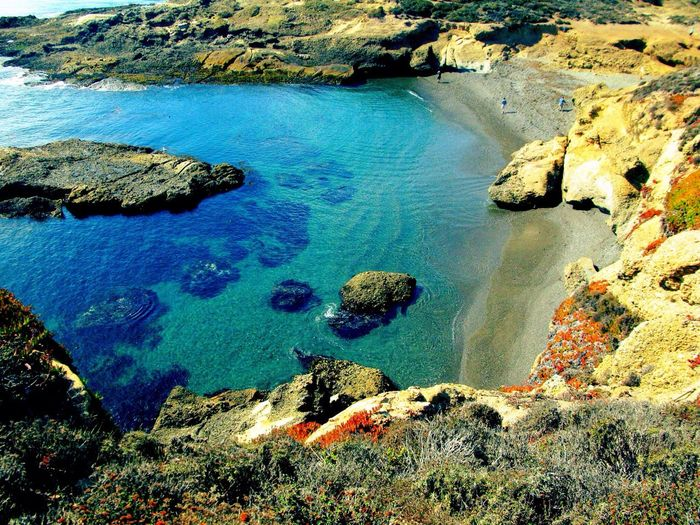 Point Lobos Ocean
