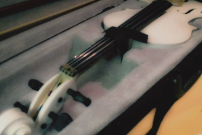 Violin White Violin Music Musical Instrument Strings Orchestra Case Indoors  Close-up No People Fourths Tuning Pitch Symphony Stringed Instrument