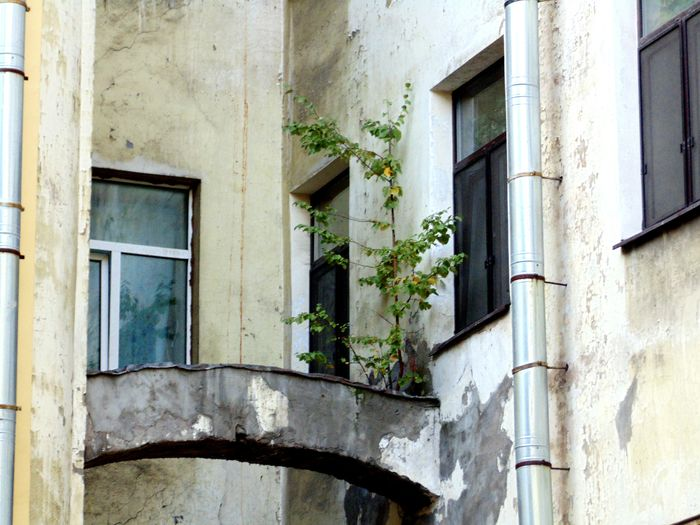 Architecture_collection Architecture Photography Russia, St.Petersburg Leningrad Trash Oldtown Old Town Windows Urban Photography