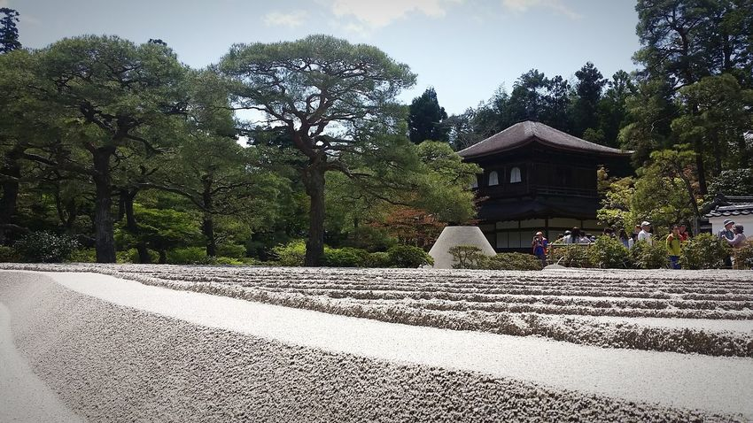 Japan Adventure Kyoto,japan Check This Out Enjoying Life Nature Praisethelord Relaxing Have A Great Day Amazing View Taking Photos