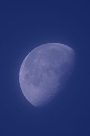 夜明け前の月 Dawn Moon Moon Shots Moon And Sky Blue Moment Of Silence From My Point Of View Nature Textures Textured  Astronomy Nature Photography EyeEm Nature Lover EyeEm Best Shots