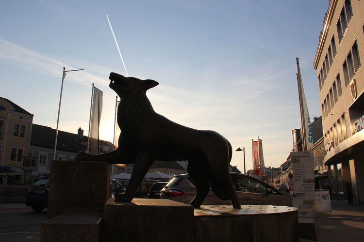 Condensation Estatua EyeEm Best Shots Sky Wolf
