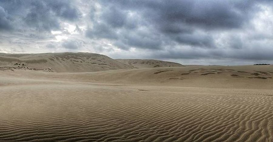 Feels like desert. @awesome.earth @tourtheplanet @awesomeglobe @kiwi_photos @purenewzealand @lonelyplanet @destinationnz @wildernessnz @earthofficial @_kiwipics @campermate Sand SandDune Newzealand Nzmustdo Tepaki Destinationnz Desert 여행 여행에미치다 Travelholic Traveler Travel 뉴질랜드 사막 여행스타그램 Igtravel Travelgram 여행사진