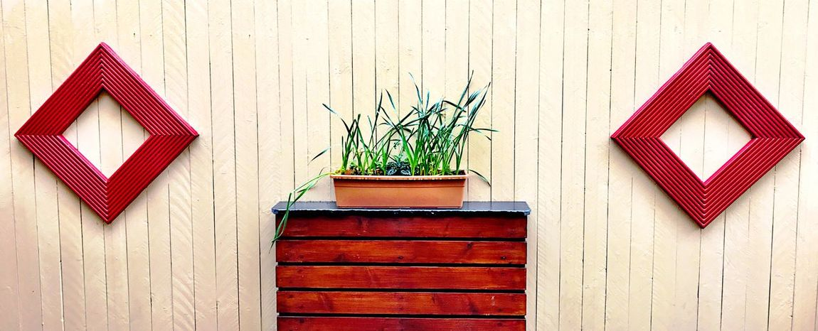 Plants and shapes Wooden Panelling Green Leaves Green Color EyeEm Selects Wood - Material Potted Plant Communication Day No People Built Structure Plant Architecture Outdoors