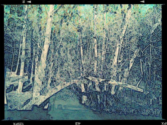 Landscape Effects 1 Of 1 Lux Of 1 Lumen
