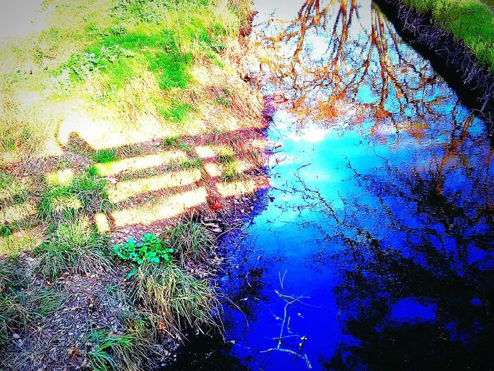 Sunlight, Shades And Shadows Shadows And Silhouettes Taking Photos Tree Porn This Week On Eyeem Trees Nature Photography My Point Of View My Photography Reflections Of Beauty Reflections On The Water Water Reflections Water Stream My Shadow Looks Good My Shadow ❤ Thats Me ♥ Hi